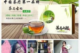 茶马古稻中国茶疗第一品牌,代理怎么做