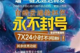 云时代/云荣耀/云猎包升级版微信24小时云端自动秒抢包软件微云秒软件授权码