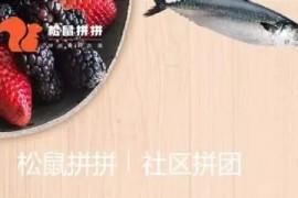 社区团购平台松鼠拼拼获3100万美元B1轮融