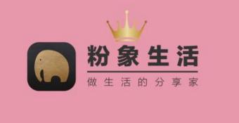 """社交电商""""粉象生活""""获千万美元Pre-A轮融资"""